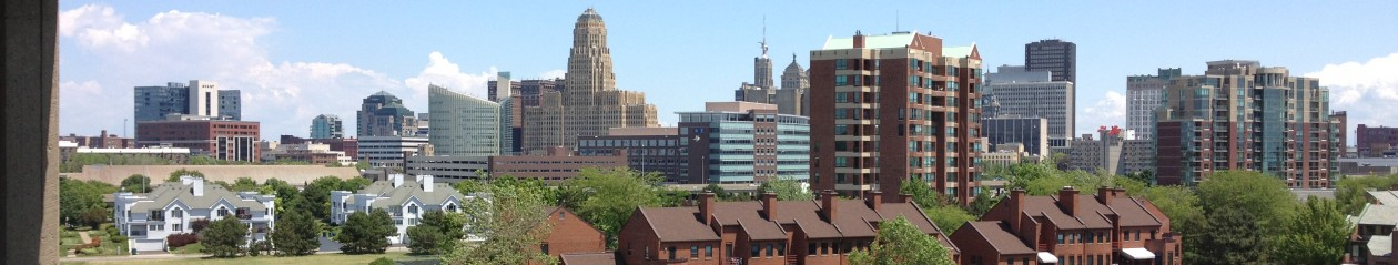 beautifulBuffalo