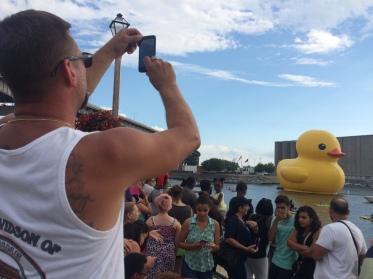 Duck 225