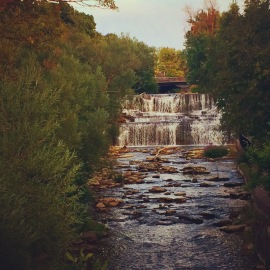 Glen Park 2016 044